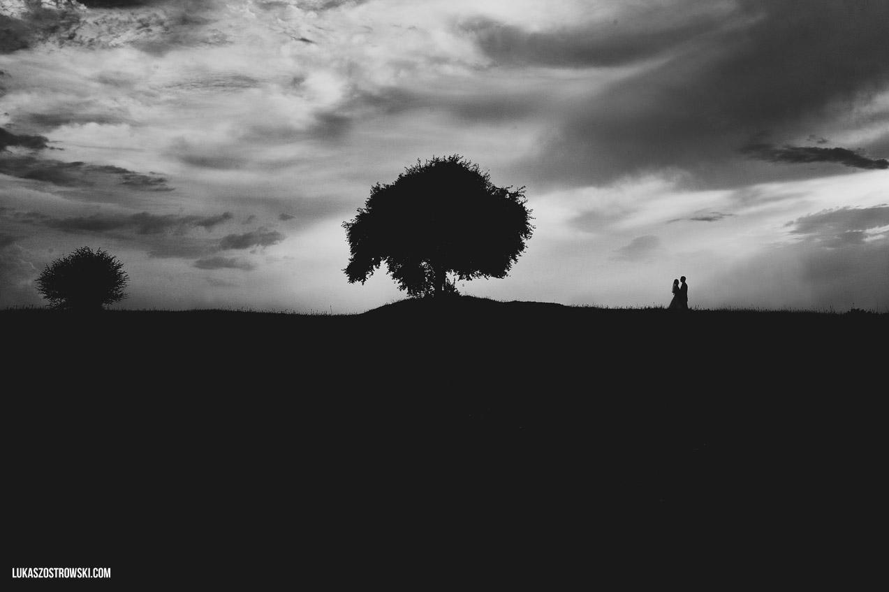 Fotografia ślubna przy drzewie